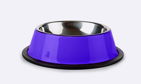 besavvi loans dog bowl